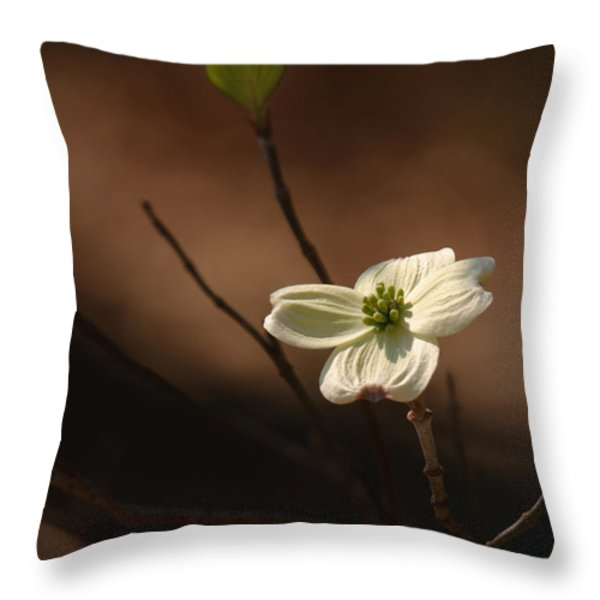 Dogwood Bokeh Painting Throw Pillow by Lara Ellis
