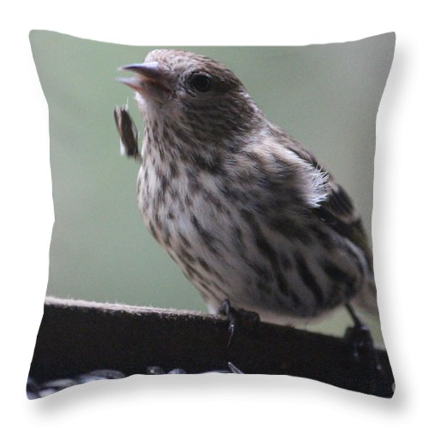 Done Eating That Seed Throw Pillow by Kym Backland