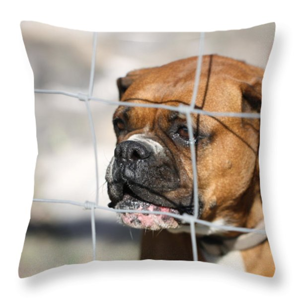 Don't Fence Me In Throw Pillow by Terry Fleckney