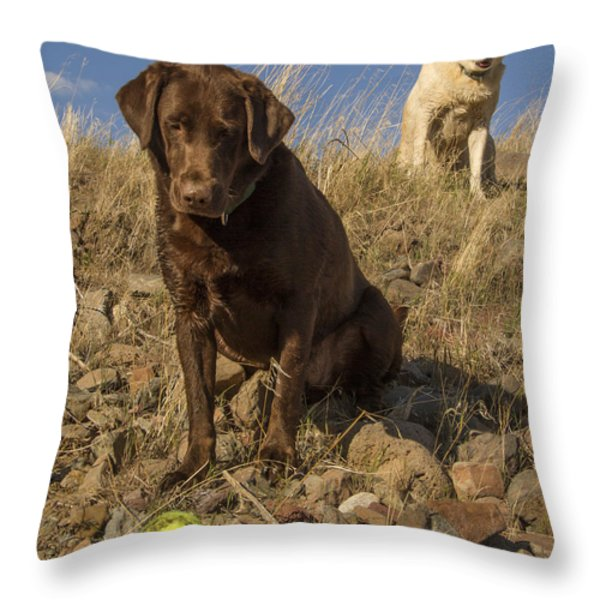 Dont Move Throw Pillow by Jean Noren