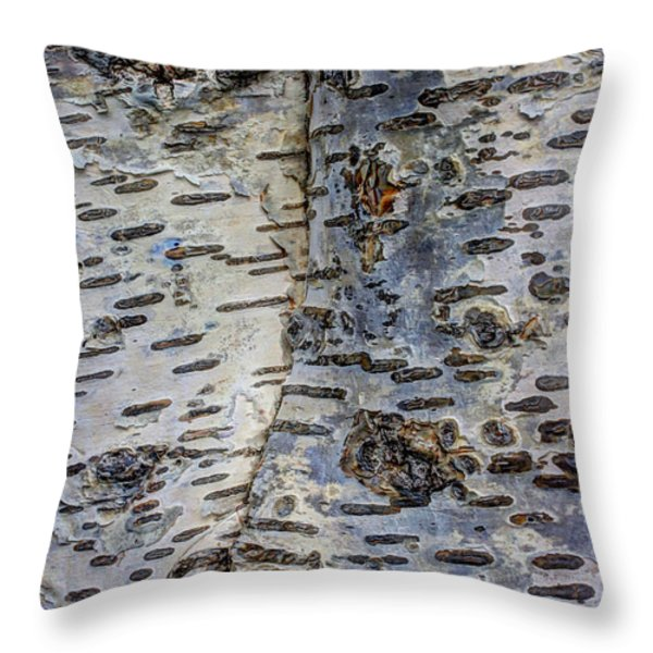 Don't Think I Can't See YOU Throw Pillow by Heidi Smith