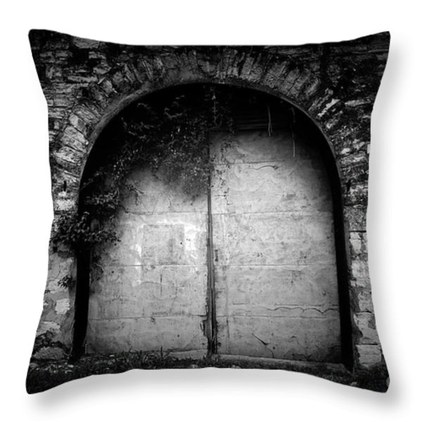 Doors To The Other Side Throw Pillow by Trish Mistric