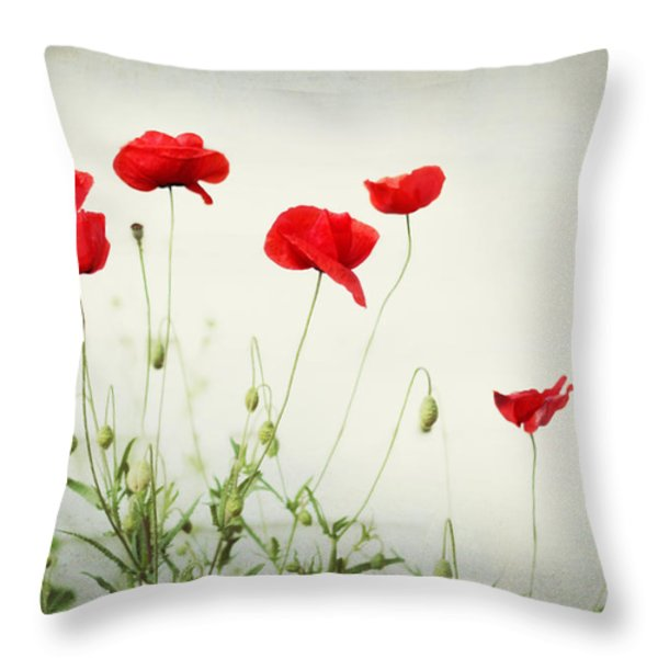 Dorothy Throw Pillow by Amy Tyler