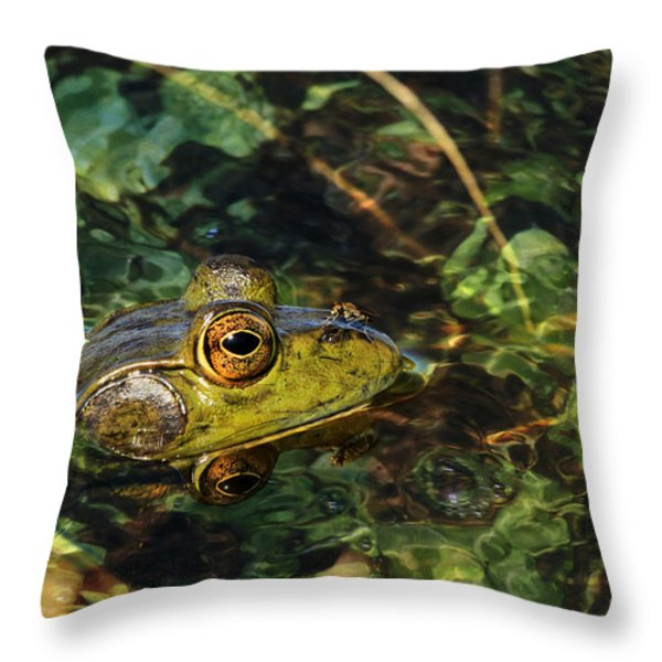 Double Dare Ya Throw Pillow by Donna Kennedy