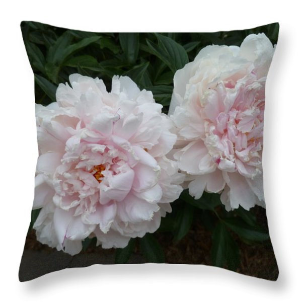 Double Delight Throw Pillow by Lingfai Leung