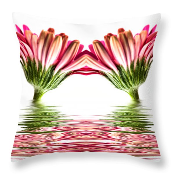 Double Pink Gerbera Flood Throw Pillow by Steve Purnell