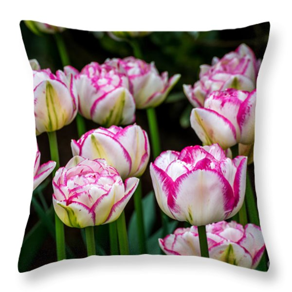 Double Touch - By Sabine Edrissi Throw Pillow by Sabine Edrissi