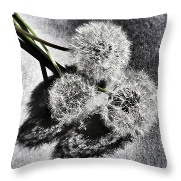 Doubled Wishes Throw Pillow by Marianna Mills