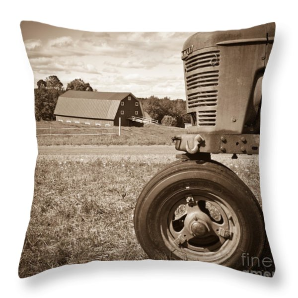 Down On The Farm Throw Pillow by Edward Fielding