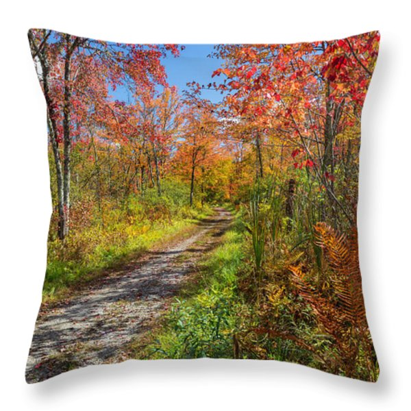 Down The Autumn Road Throw Pillow by Bill  Wakeley