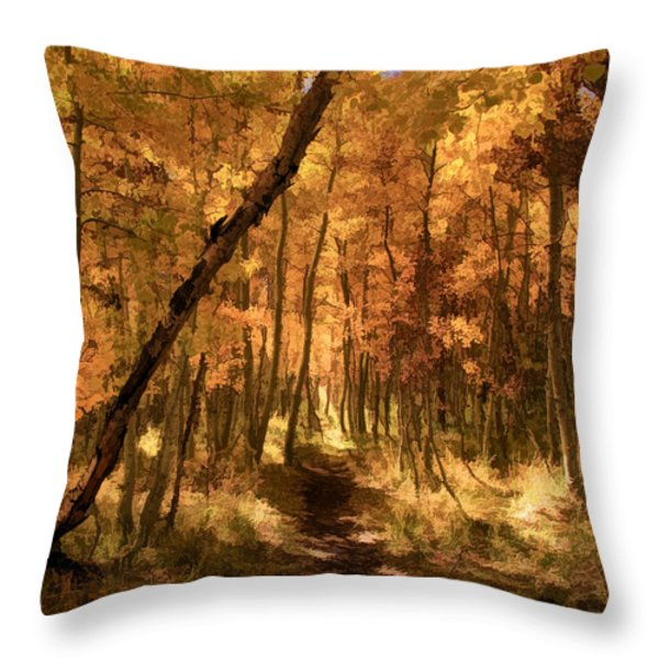 Down the Golden Path Throw Pillow by Donna Kennedy