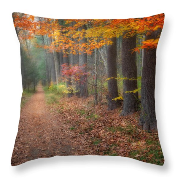 Down The Trail Throw Pillow by Bill  Wakeley