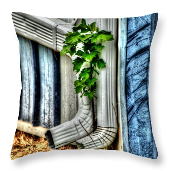 Downspout Throw Pillow by Michael Braham