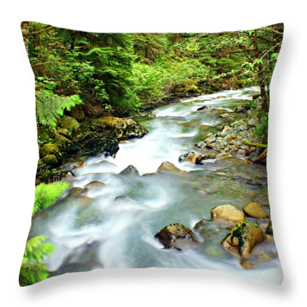 Downstram in the Olympics Throw Pillow by Marty Koch