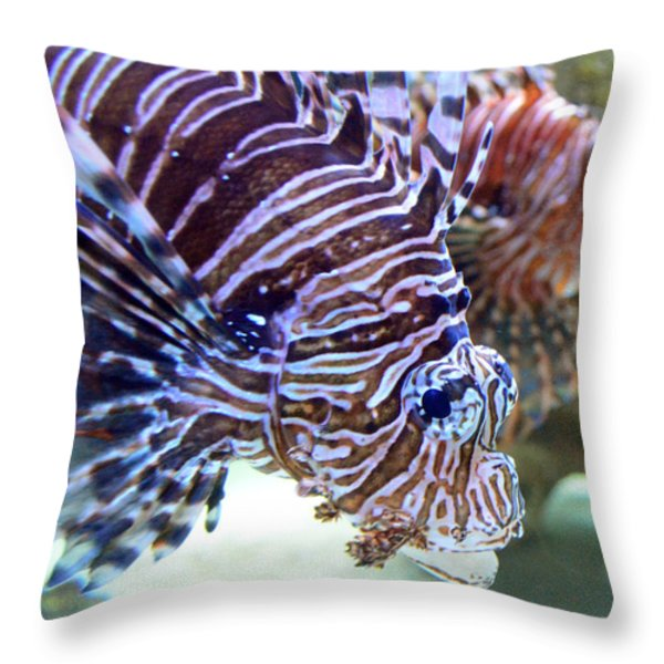 Dragonfish In Tandem Throw Pillow by Sandi OReilly