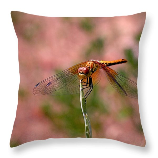 Dragonfly Throw Pillow by Rona Black