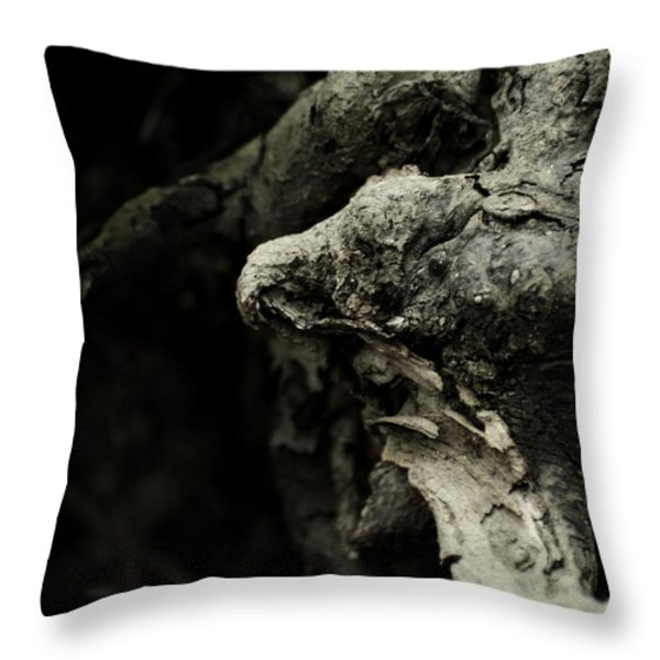 Dream Chanter Throw Pillow by Rebecca Sherman