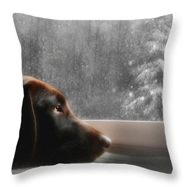 Dreamin' of a White Christmas Throw Pillow by Lori Deiter
