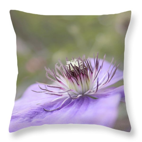 Dreaming Throw Pillow by Kim Hojnacki