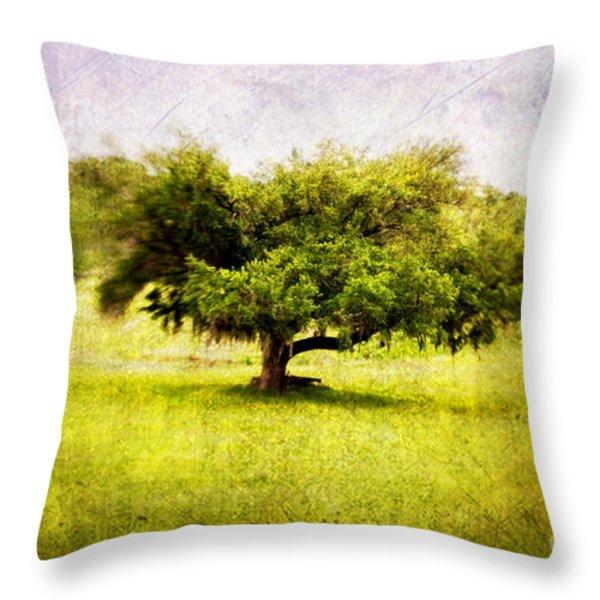 Dreamland Throw Pillow by Scott Pellegrin