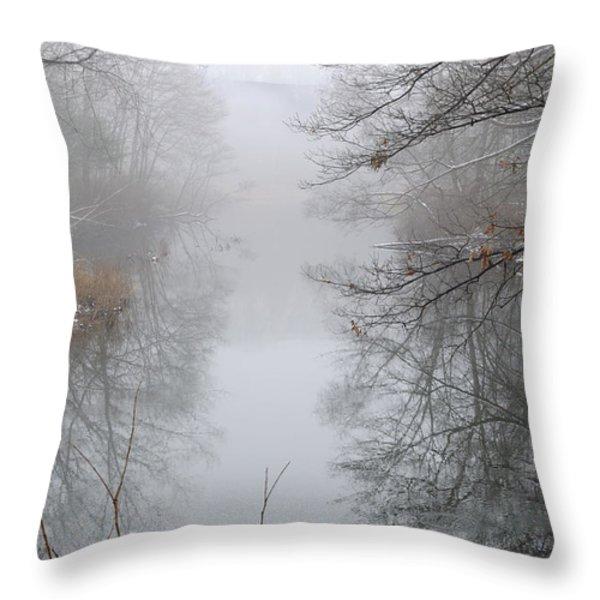 Dreamlike Throw Pillow by Luke Moore