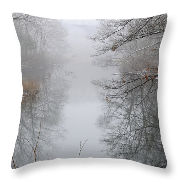 Dreamlike Throw Pillow by Luke Moore