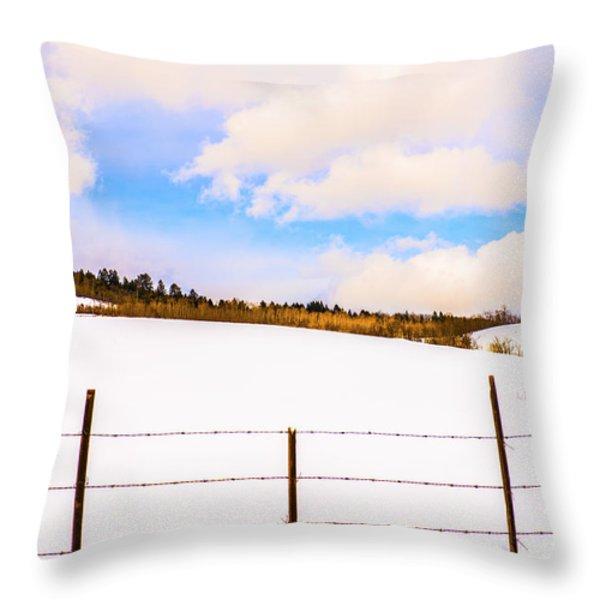 Dreamtime Throw Pillow by Sandi Mikuse
