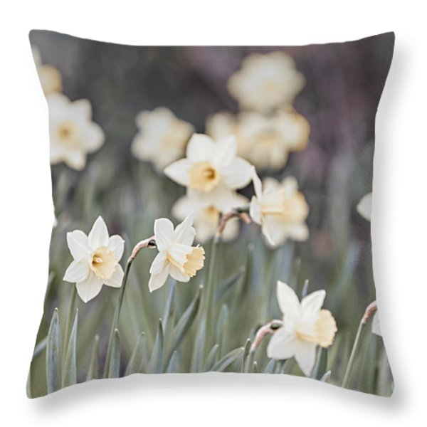 Dreamy Daffodils Throw Pillow by Elena Elisseeva