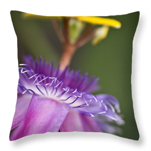 Dreamy Passion Throw Pillow by Priya Ghose