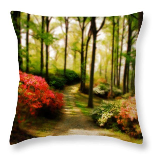 Dreamy Path Throw Pillow by Lois Bryan