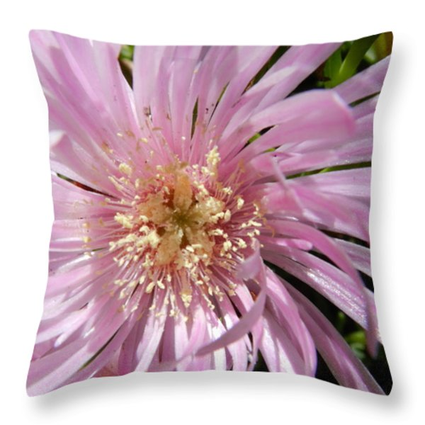 Dressed In Pink Throw Pillow by Leana De Villiers