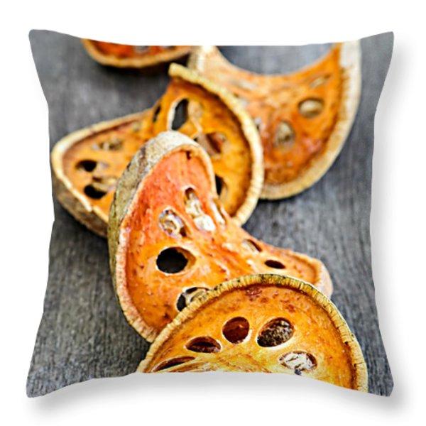 Dried Bael Fruit Throw Pillow by Elena Elisseeva