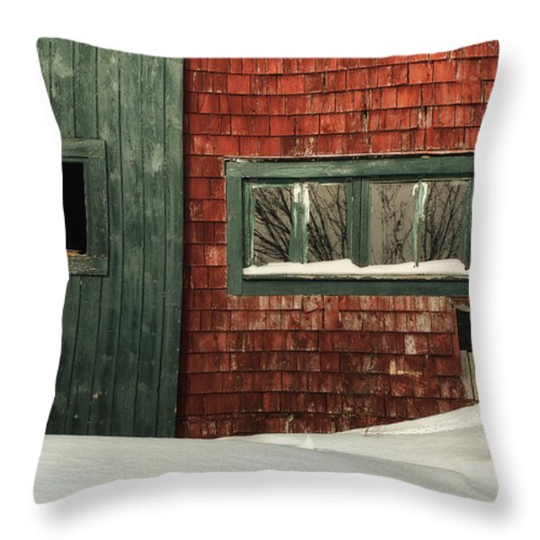 Drifted In Throw Pillow by Susan Capuano