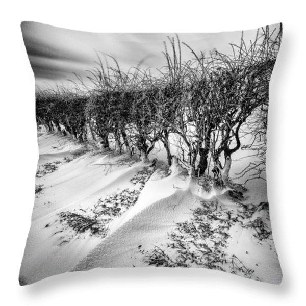 Drifting Throw Pillow by John Farnan