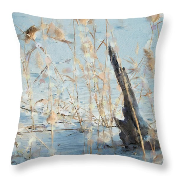 Driftwood Abstract Throw Pillow by Betty LaRue