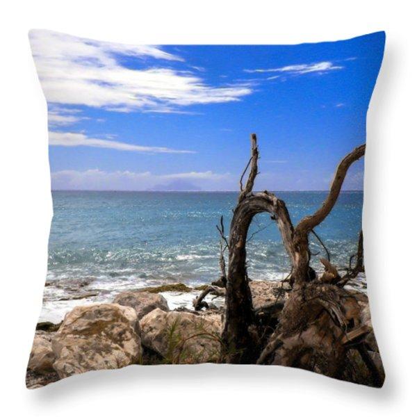 Driftwood Island Throw Pillow by Karen Wiles