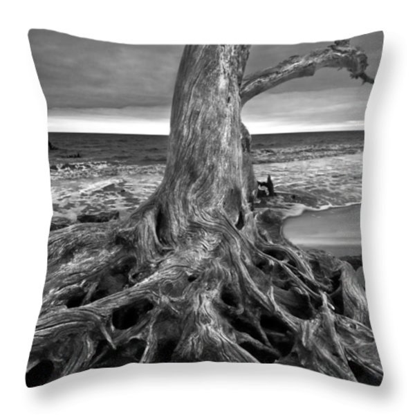 Driftwood on Jekyll Island Black and White Throw Pillow by Debra and Dave Vanderlaan