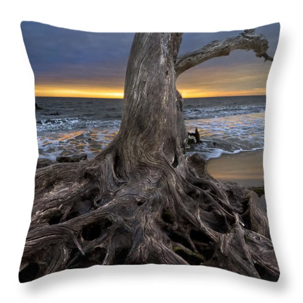 Driftwood On Jekyll Island Throw Pillow by Debra and Dave Vanderlaan