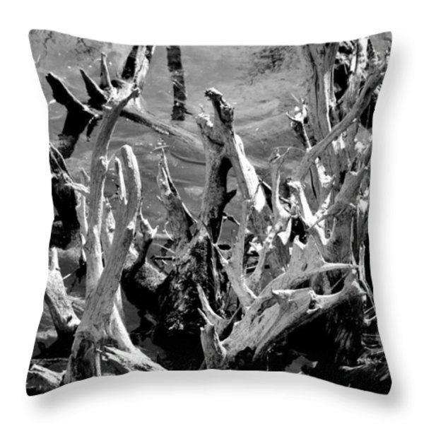Driftwood On Lost Lake Throw Pillow by Michelle Calkins