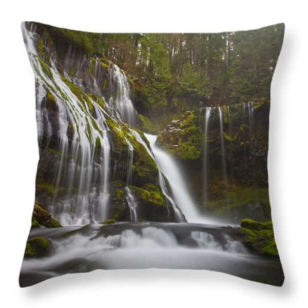 Dripping Wet Throw Pillow by Darren  White
