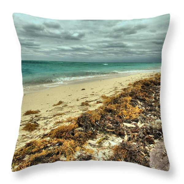 Dry Tortugas Beach Throw Pillow by Adam Jewell