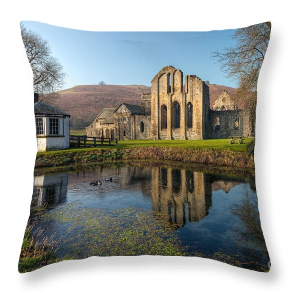 Duck Pond Throw Pillow by Adrian Evans