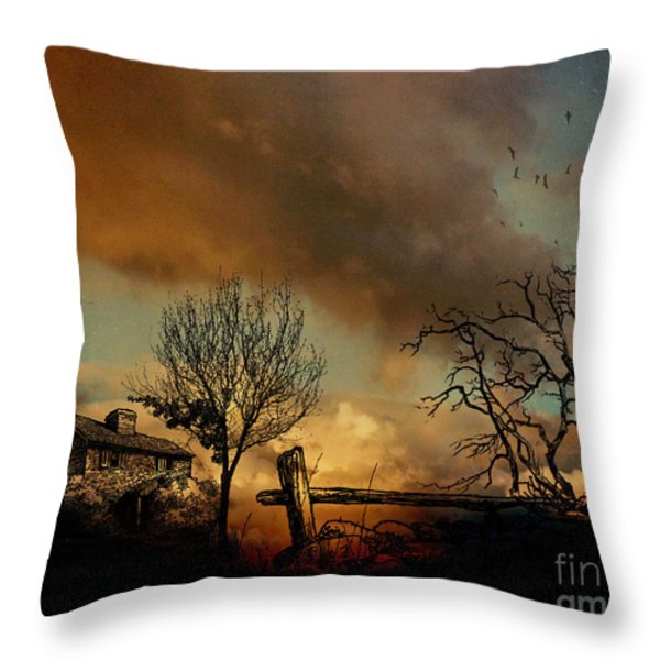 Dusk Throw Pillow by Cheryl Young