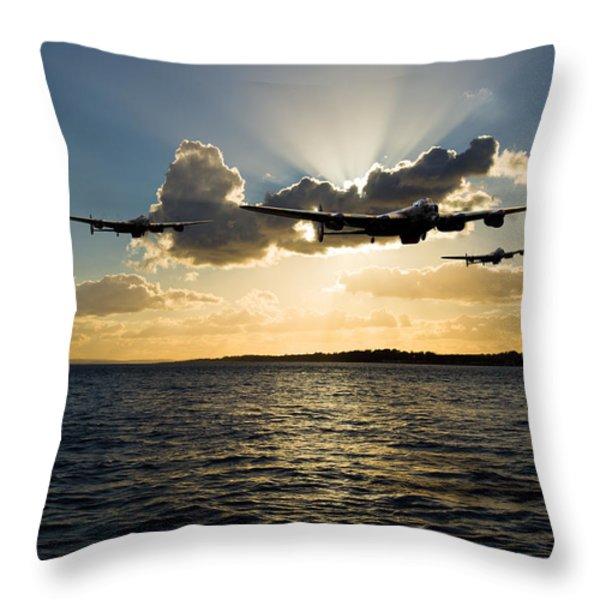 Duty Bound Throw Pillow by Gary Eason