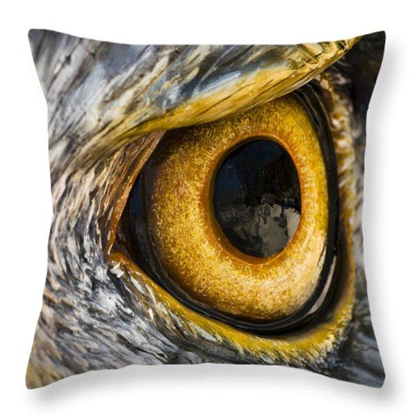 Eagle Eye Throw Pillow by Brian Archer
