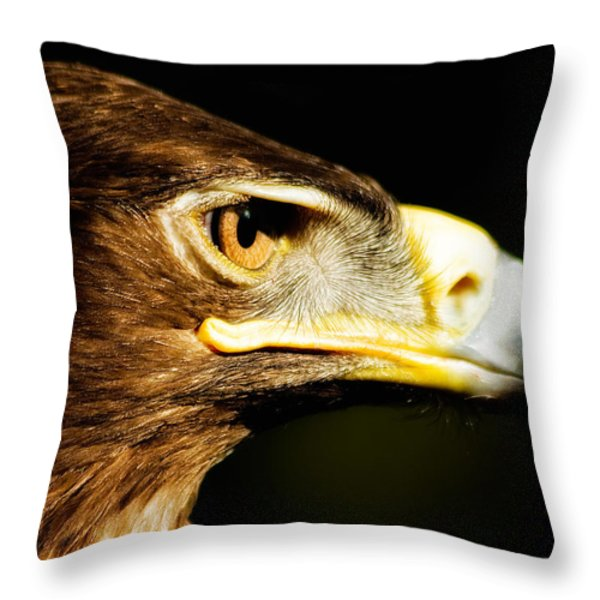 Eagle Eye - Steppes Eagle Profile Throw Pillow by Jay Lethbridge