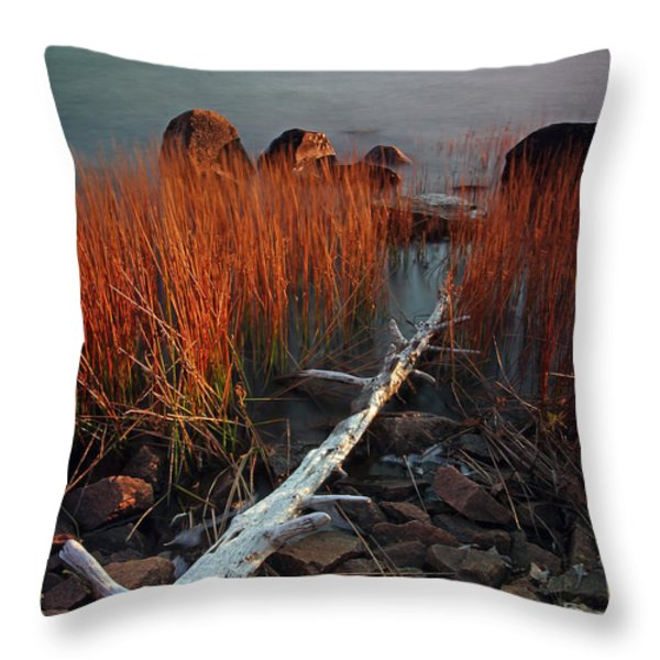 Eagle Lake at Autumn Throw Pillow by Juergen Roth