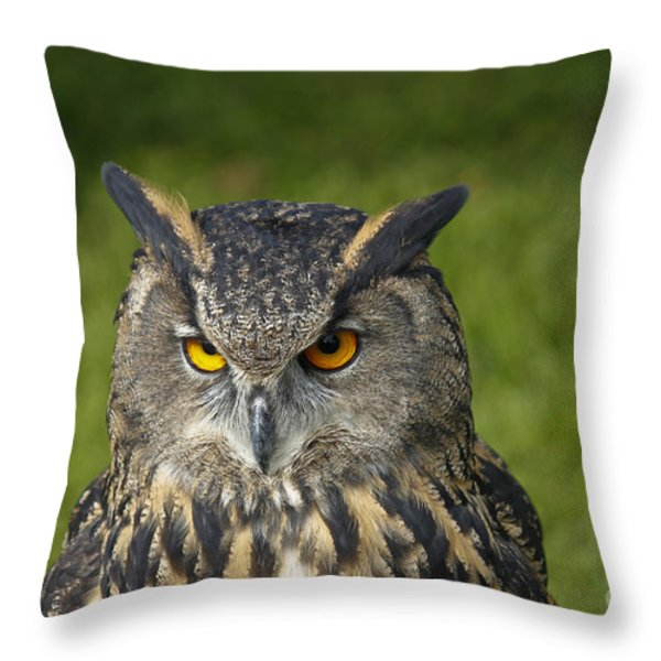 Eagle Owl Throw Pillow by Clare Bambers