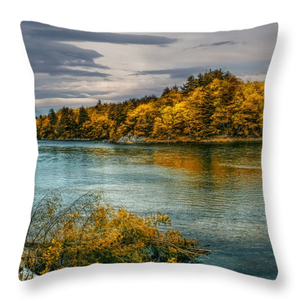 Early Autumn Along the Androscoggin River Throw Pillow by Bob Orsillo