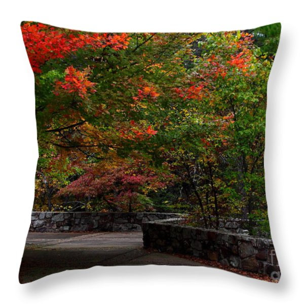 Early Fall At Talimena Park Throw Pillow by Robert Frederick